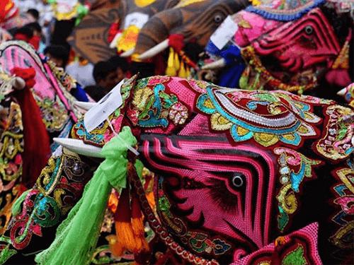 Táncoló elefánt fesztivál jelmez